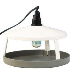 Klebefläche für Flohlichtfalle mit LED Licht