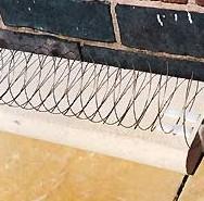 abwehr spirale stahlspirale marder tauben vogel. Black Bedroom Furniture Sets. Home Design Ideas