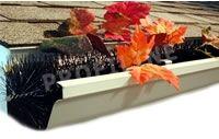 cutterpiller rinnenraupe kaufen dachrinne marder. Black Bedroom Furniture Sets. Home Design Ideas